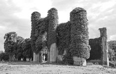 Moydrum Castle - Athlone, County Westmeath, Ireland - U2 POI