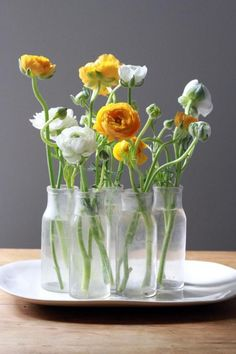 Yellow and White Ranunculus: inspiration for your spring garden planning. #ranunculuscenterpiece #whiteranunculus