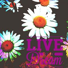 #MondayMotivation Don't Forget To…Live Your Dream ;) #Quote #Inspiration #Motivation #ScentsySpirit #WordsThatInspire