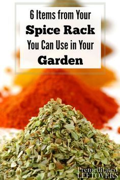 Here are 6 Items from Your Spice Rack You Can Use in Your Garden for pest control, natural weed killer, and more. Give them a try in your garden this year! Organic Gardening idea using items from your house and kitchen to protect your home garden.