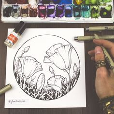 Freedom Rise - Inking Poppies | Art by Becca Stevens @freedomrise