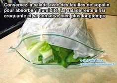 Voici le truc pour conserver la salade croquante beaucoup plus longtemps. Découvrez l'astuce ici :