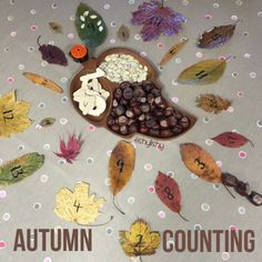 Numbered leaves and conkers.