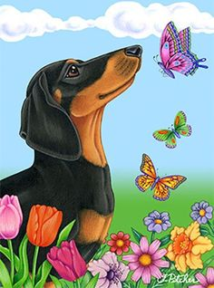 Best of Breed Dachshund Black/Tan Butterfly Garden Flag Arte Dachshund, Dachshund Love, Daschund, Animals And Pets, Cute Animals, Weenie Dogs, Dog Paintings, Dog Art, Dog Pictures