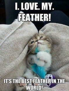My feather!! Lol