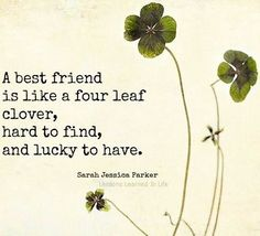 Top 20 best Friend Quotes . Friendship Forever | Quotes Words Sayings