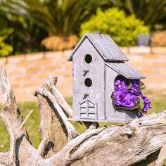 As casinhas de passarinho são perfeitas para dar um toque especial a decoração do jardim e ainda atrair o encanto dos pássaros para perto do seu lar.  http://carrodemo.la/35fef