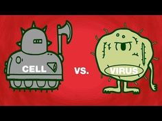 TED-ed Cell vs. virus: A battle for health - Shannon Stiles Biology Lessons, Ap Biology, Science Biology, Teaching Biology, Science Lessons, Science Education, Science Activities, Life Science, Science And Technology