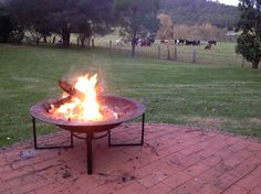 Firepit and Nieghbours