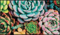 """Gefällt 38 Mal, 3 Kommentare - by Kleen-Tex (@wash_and_dry_floorfashion) auf Instagram: """"Ein weiteres neues Trenddesign, das wir auf der #trendset vorstellen: Edge of Night - 75/120cm -…"""" Terrace Garden, Trends, Succulents, Plants, Design, Instagram, Terraced Garden, Succulent Plants, Planters"""