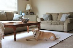 Blue White Living Room via homework {Mohawk 6x9 rug giveaway)