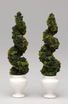 Pairs of topiaries make attractive green decorative accessories.