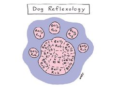 Dog Reflexology Cartoon | Reader's Digest