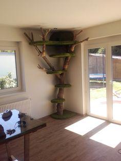Home Decor, Tree Structure, Luxury, Decoration Home, Room Decor, Home Interior Design, Home Decoration, Interior Design