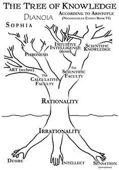 bensozia: Trees of Knowledge
