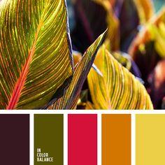 баклажановый, желтый, красный, малиновый красный, оливковый, оранжевый, подбор цвета в интерьере, тёмно-зелёный, теплый оранжевый, фиолетовый, яркий желтый, яркий красный.