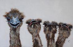"""""""G'day Fellas, what's up?"""" by Julie Hollis. Paintings for Sale. Quirky Art, Weird Art, Australian Artists, Paintings For Sale, Online Art Gallery, Original Art, Bird, Artwork, Animals"""