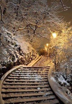~ Living a Beautiful Life ~ Winter Walk, Gellert Hill, Budapest, Hungary! Winter Szenen, I Love Winter, Winter Walk, Winter Magic, Winter Time, Paris Winter, Snow Scenes, Winter Pictures, Winter Beauty