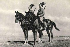 Hungary, Camel, Army, Horses, History, Animals, Germany, World War, Animales