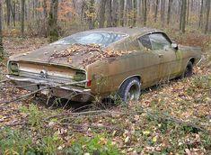 verwaarloosd_Ford Torino