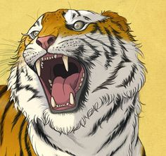 Richard Wilkinson Illustrators, Modern Art, Tiger Tiger, Draw, Tigers, Art Work, Nature, Bright, Paintings