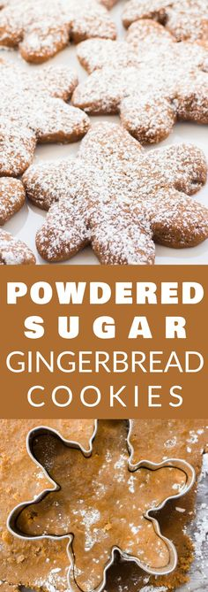 Powered Sugar GINGERBREAD Cookies! These cookies are so soft and chewy! This is a easy recipe that doesn't require you to chill the dough so they're quick and simple to make! They have a pretty powdered sugar decorated top for kids to help with! These are one of the best Christmas cookies to make!