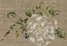 "Rosier ""Blanc double de Coubert"" Ribbon Embroidery, Cross Stitch Embroidery, Cross Stitch Patterns, Gustave Courbet, Cross Stitch Flowers, Hobbies And Crafts, Diy Flowers, Cross Stitching, Needlework"