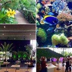 Konferenz Barrierefreie IT 2016 - Eindrücke aus der Biosphäre Potsdam.