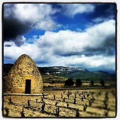 #Wine #tours in #Rioja (Spain), enjoy the experience