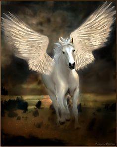 pegasus and unicorn Unicorn Horse, Unicorn Art, Magical Unicorn, Magical Creatures, Fantasy Creatures, Pegasus Tattoo, Winged Horse, Unicorn Pictures, Unicorns And Mermaids
