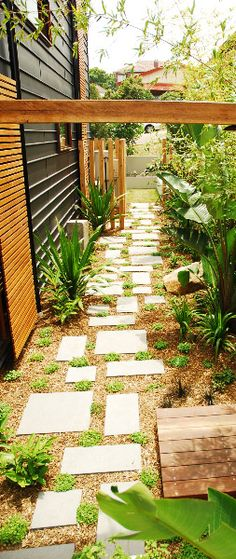 stepping stones irregular