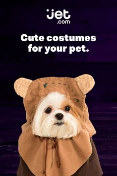 Diy dog ewok costume cut off brown t shirt sleeve and sew on ears got a furry friend who needs a halloween costume shop jet to find solutioingenieria Image collections