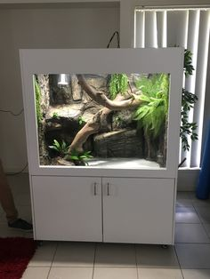 Excellent Pic Reptile Terrarium room Strategies There's no question which having a puppy will bring much pleasure so that you can a person's life. Snake Terrarium, Large Terrarium, Aquarium Terrarium, Hanging Terrarium, Terrarium Containers, Air Plant Terrarium, Reptile Habitat, Reptile Room, Reptile Cage