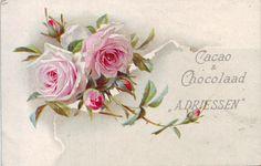 chromo cacao driessen - spray of pink roses Floral Vintage, Rose Art, Love Rose, China Painting, Rose Design, Vintage Pictures, Vintage Advertisements, Printable Art, Pink Roses