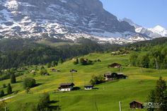 Yodle a e hoo!!!!   pictures of switzerland | more options information about grindelwald see grindelwald on google ...
