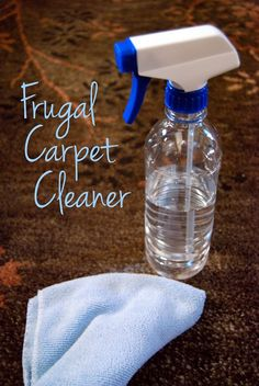 Here is a frugal solution for those carpet stains when they happen. Why spend money on expensive, toxic carpet cleaners and stain removers from the store when you can easily make your own frugal carpet cleaner from items in your kitchen cupboard! Household Cleaners, Diy Cleaners, Cleaners Homemade, Steam Cleaners, Household Tips, Diy Carpet Cleaner, Carpet Cleaners, Deep Carpet Cleaning, How To Clean Carpet