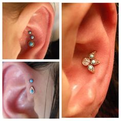 unique piercings: triple conch with turquoise jewelry, double forward helix, and quadruple conch piercing ~ Photo by urbanlumberjack