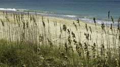 Experience North Carolina's Best Beaches (Photo Credit: Brad Styron)
