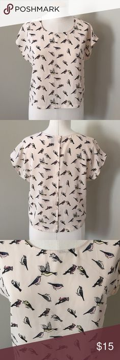 Cropped blouse with bird print Creamish pink blouse with black birds highlighted in blue, pink, and yellow. 6 buttons down the back of the blouse. 100% polyester. Measures approximately 18 1/2 inches from shoulder to hem in front. (About an inch longer in the back) And 20 inches from armpit to armpit. Divided by H&M Tops Blouses