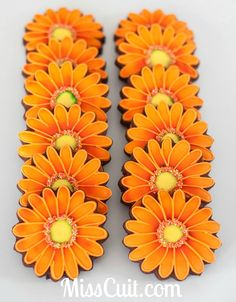 Orange gerbera daisy flowers cut-out sugar cookies / biscuits decorated with royal icing.  Galletas decoradas flores.