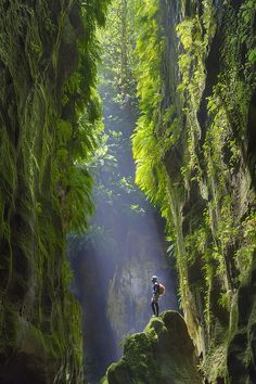 I want to discover the Blue Mountains Canyon in Australia Tag someone that you want to travel with Photo cred: Beautiful World, Beautiful Places, Environment Concept Art, Fantasy Landscape, Parkour, Blue Mountain, Amazing Nature, Land Scape, Beautiful Landscapes