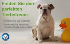 Hundesitter: die Alternative zur Hundepension