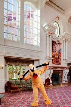 Pluto at the Disneyland Hotel #DLRP Disney