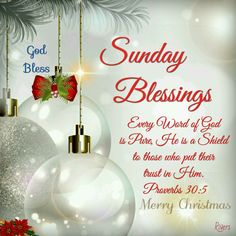 Sunday Blessings (Proverbs 30:5) #Christmas