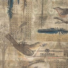 Wallflowers  Aviary  Tim Holtz  Birds Collage Quilting Sewing Fabric by FabricSweets
