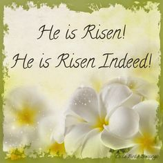 "Little Birdie Blessings : He is Risen! He is Risen Indeed! ~ The angel answered and said to the women, ""Do not be afraid, for I know that you seek Jesus who was crucified. He is not here; for He is risen, as He said. Come, see the place where the Lord lay.  Matthew 28:5-6"