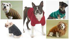 Top 5 Free Dog Sweater Knitting Patterns | LoveKnitting Blog