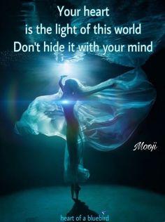 shine your heartlight ...