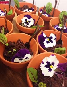 Catering by Amuzes: Eetbare bloempotjes