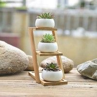 Ceramic Flower Pots,White Ceramic Planter,Set of 3 Mini Succulent Flower Pots with Bamboo Tray Feat